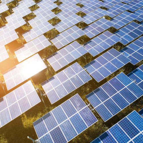Top,View,Of,Solar,Panels,(solar,Cell),In,Solar,Farm